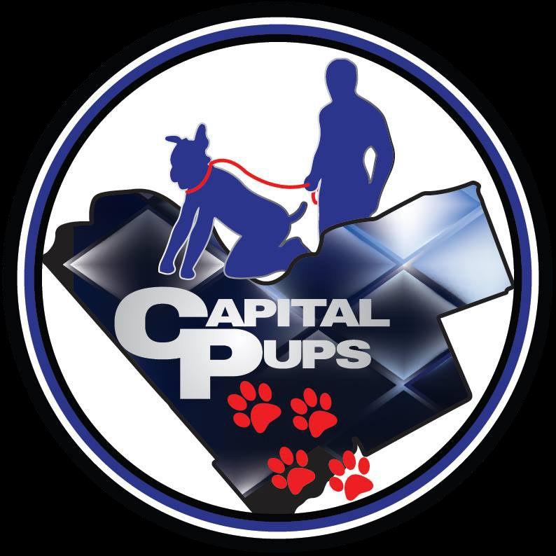 Capital pups